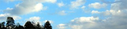 眩暈がしそうになったら空を眺めると良いのです。